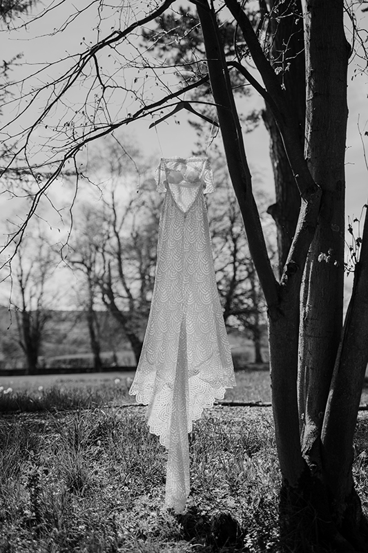 Wedding Dress hanging from tree photo