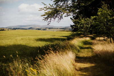 Scottish countryside grass fields